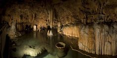 Lilly Pad Room   St Louis Amazing Caves