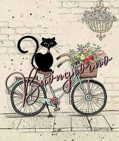 Cat on bike card Bike Drawing, Drawing Sketches, Drawings, Bug Art, Love Illustration, Illustration Pictures, Cat Cards, Happy Art, Cat Supplies