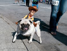 Woody Tops Dog | | gazettes.com