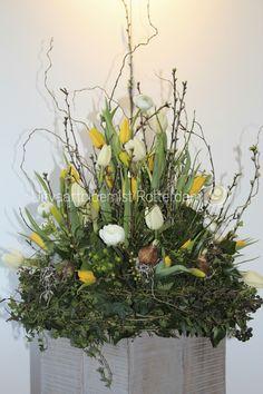 Ontluikend voorjaar • bolletjes • tulpen • lente • natuurlijk • rouwstuk • rouwbloemstuk • Spring • Tulip • flower bulbs • funeral arrangement