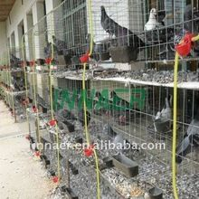 Pigeon Cage, Pigeon Cage direct from Anping County Innaer Wire Mesh Manufacturing Co. in China (Mainland) Pigeon Cage, Wire Mesh, China, Metal Lattice, Wire Mesh Screen, Porcelain