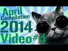 Youtube / AFunnyBird  New Funny Videos, Funny Fails, Funny Vines, Compilation, Fail Compilation,  2014 Part#4 Thank you  for watching Don't forget to subscribe :)