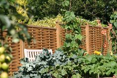 Tongue And Groove Fence Panels And Fencing On Pinterest