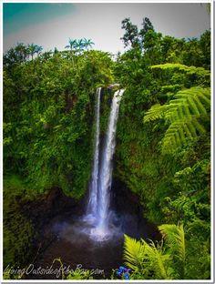 Fuipisia Waterfalls in Apia, Samoa