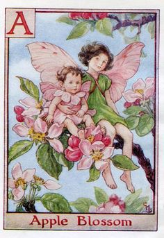 Apple Blossom Alphabet Letter A Flower Fairy Vintage Print, c.1940 Cicely Mary Barker Book Plate Illustration