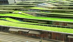 Stunning Green Roofed High School by Off Architecture. - moh Stunning Green Roofed High School by Off Architecture… Green Roofed High School by Off Architecture. Green Architecture, Sustainable Architecture, Sustainable Design, Landscape Architecture, Landscape Design, Architecture Design, Terrace Building, Green Building, Jean Moulin
