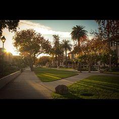 Santa Clara University - The Jesuit University in Silicon Valley Santa Clara California, Santa Clara County, Santa Clara University, Safe Harbor, Local Attractions, Sail Away, College Students, Sailing, Sidewalk