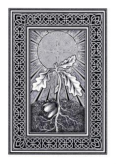 Snowdrop by fibacz on DeviantArt Celtic Patterns, Celtic Designs, Celtic Knot Tattoo, Celtic Knots, Celtic Braid, Vikings, Celtic Border, Woodcut Tattoo, Celtic Art