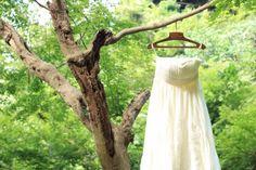 【基礎知識】ウエディングドレスの種類とブランドを徹底研究!今、知りたいドレス事情 Plants, Plant, Planets