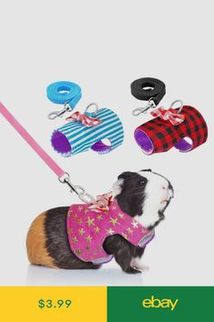Small Pet Harness and Leash Set - Rabbit, Hamster, Ferret, Guinea Pig Hamster Clothes, Guinea Pig Clothes, Guinea Pig Costumes, Animal Costumes, Guinea Pig Accessories, Pet Ferret, Baby Guinea Pigs, Small Animal Cage, Pet Toys