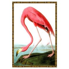 Check out this item at One Kings Lane! Flamingo II