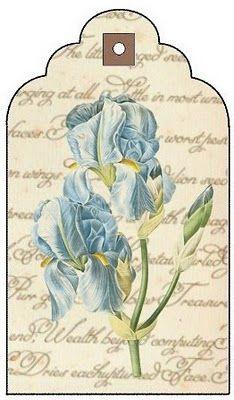 Irises - free to print tag.