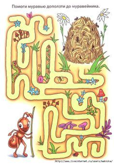 De mier wil naar de mierenhoop, help haar