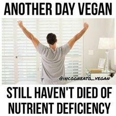 VeganHumor
