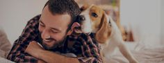 Cuidadores de perros en tu zona: Mejor que residencias caninas   DogBuddy