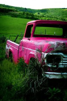 ♂ Aged with beauty pink truck in green grass #pink #truck