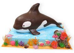 orca cake | whale cake