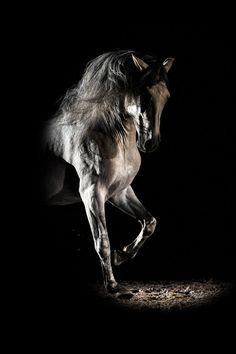 Light by Driss Ben Malek on 500px