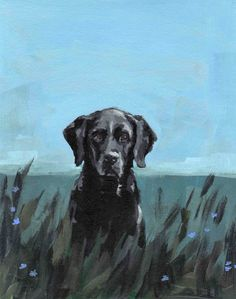 black lab dog art painting print . MOLLY DOG .13 x 19 large animal portrait.  via Etsy.