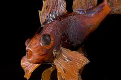 Amazing glass fish! Contemporary Glass Sculpture by Kelly Howard