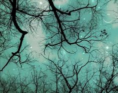 """This print is entitled """"Winter Teal Christmas Sky,"""""""