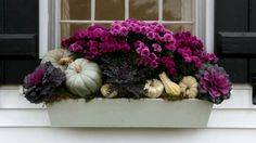 Gorgeous Fall Outdoor Decor Ideas Will Last You All Season Transform a forgotten space into a stunning window box with the season's best blooms./Transform a forgotten space into a stunning window box with the season's best blooms.