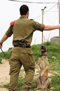 An IDF handler trains his dog