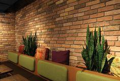 15 fantastiche immagini su rivestimenti pareti case design di