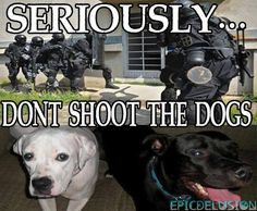 Seriously, don't shoot the dogs. #EndtheDrugWar