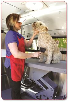 Aussie Pet Mobile - Mobile Pet Grooming is perfect for nervous pets and busy people