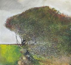 Kurt Jackson, Tree Gwedhen - I like his style of painting as he often gives the painting a bold and striking feel with the use of brush strokes, yet he is also able to create a simplistic feel with the choice of colours Kurt Jackson, Contemporary Landscape, Abstract Landscape, Landscape Paintings, St Just, Art Plastique, Tree Art, Illustration Art, Trees