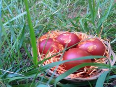 Χρώματα της φύσης... - Kouvaraki Easter Eggs, Vegetables, Vegetable Recipes, Veggies