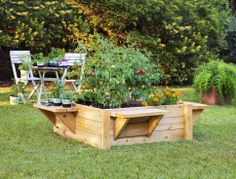 Get creative with your raised garden bed. Whether you build your own or buy a kit, you can use them to grow anything from herbs to shrubs and small trees.