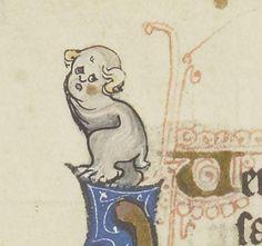 Too cute!! 可愛い。 13世紀 BnF Smith-Lesouëf 20 f.114v, 13th century