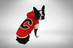 Protect Me Alerts NHL Calgary Flames Varsity Dog Jacket, Extra Small Varsity Jackets, Dog Safety, Dog Wear, Hockey Teams, Calgary, Nhl, Best Dogs, Boston Terrier, Your Favorite