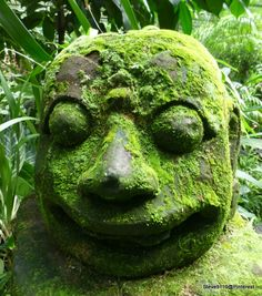 Statue with moss @ Singapore botanical garden, Singapore