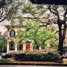 Beautiful on Liberty Street in Savannah, GA