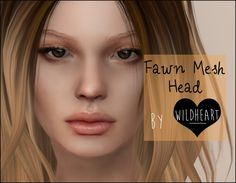 WILDHEART  Fawn