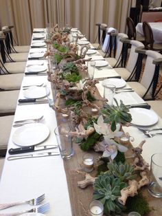 Succulent drift wood cymbidium centerpiece with burlap and candles