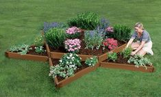 """Frame It All Composite Raised Bed 12' X 12' X 11"""" Garden Star 2"""" Profile"""
