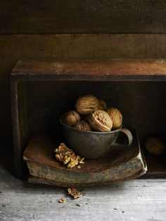 Still life of Walnuts in an old French potting shed