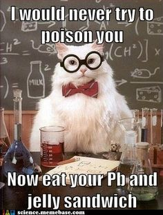 See also my Chemistry Cat pinterest ( Jerry Young) board ☼