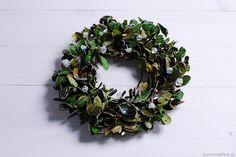 Zielony wianek wykonany z zielonych listków, niekiedy wpadających w klimat jesienny. Obsypany sztucznym, mieniącym się śniegiem. Może służyć jako ozdoba okna, parapetu, tarasu czy drzwi.