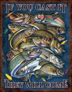 Fishing - If You Cast It They Will Come Distressed Retro Vintage Tin Sign Tin Sign Fishing Signs, Fishing Humor, Fly Fishing, Fishing Quotes, Fishing Books, Fishing Shop, Trout Fishing, Saltwater Fishing, Metal Plaque