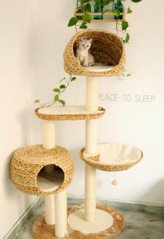 Cats Toys Ideas - 25 Indoor Cat Tree Ideas For Play And Relax - Ideal toys for small cats Cool Cats, Cool Cat Toys, Diy Cat Tree, Cat Towers, Cat Room, Cat Condo, Pet Furniture, Cheap Furniture, Furniture Ideas