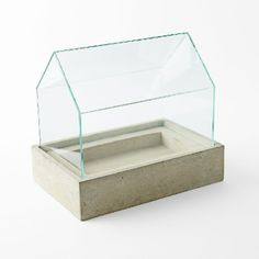glass and concrete terrarium