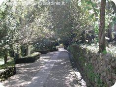 San Leonardo Siete Fuentes - #Santu Lussurgiu