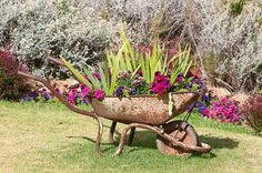 Organic Gardening Ideas 34 of the Best Wheelbarrow Planter Ideas - Wheelbarrows are used to bring things from one place to another but they can also hold a garden of their own. Here are some ways to make it happen. Garden Yard Ideas, Garden Projects, Garden Art, Garden Design, Outdoor Planters, Garden Planters, Wheel Barrel Planter, Best Garden Tools, Wheelbarrow Garden