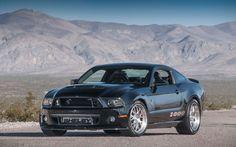 Shelby 1000 SC         Das Auto:  Der Shelby 1000 SC auf Basis des Ford...