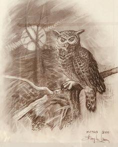 Moose Art, Owl, Bird, Animals, Animais, Animales, Animaux, Birds, Owls